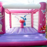Inside of Princess Jumping Castle Image