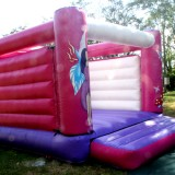 Side of Princess Jumping Castle Image